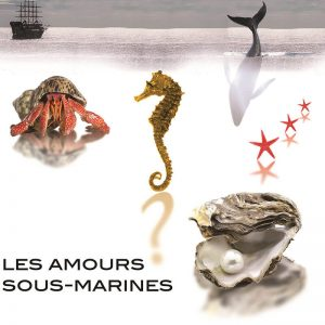 Les Amours Sous Marines - l'Ancien Evêché - Uzès (30) @ L'Ancien Evêché | Dourges | Hauts-de-France | France