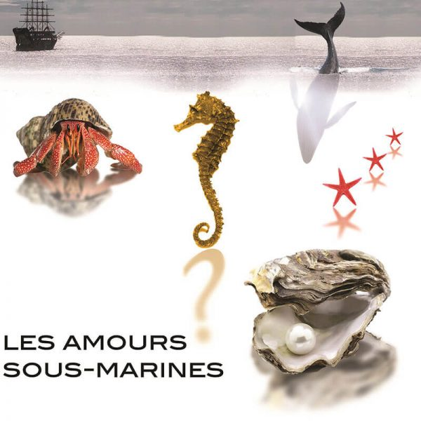 Amours Sous Marines - Affiche